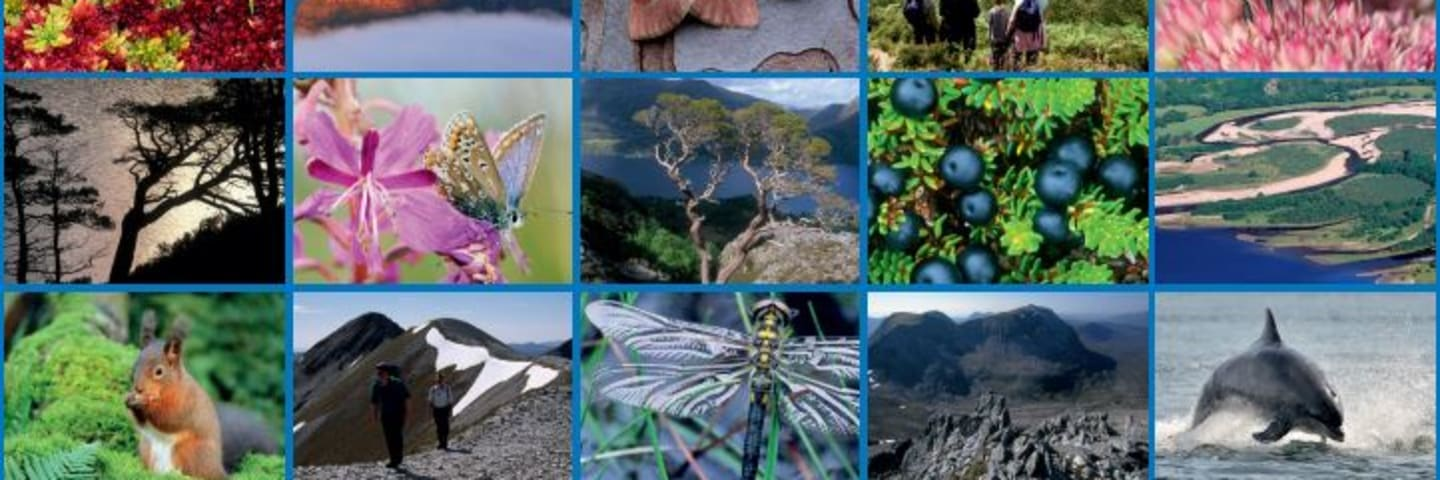 Scotland's People and Nature Survey published