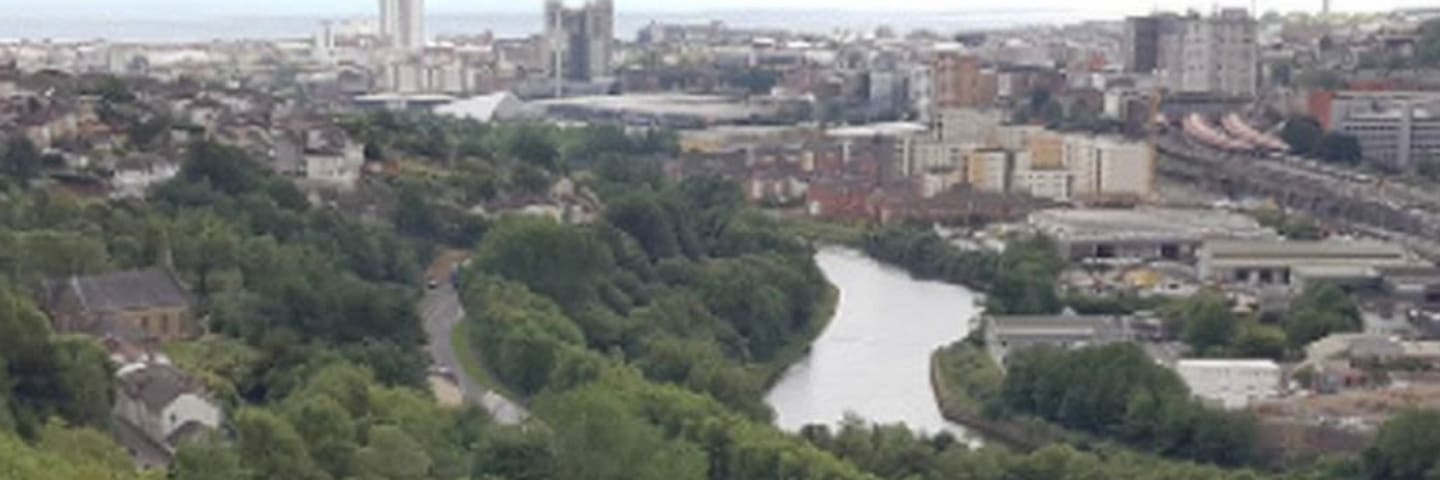 Climate change: Plans to double Swansea's green space