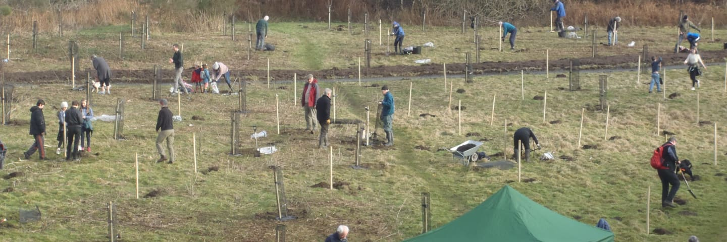 Creating a Heritage Orchard for Laigh Hills Park