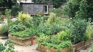 Better Outside - Nature Recovery Project - Woodlands Community Garden