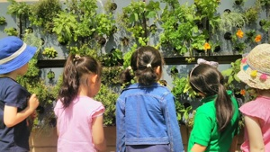 Busby Primary pupils create edible vertical garden